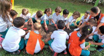 Los niños y la siembra
